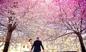 медовый месяц весной