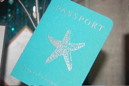 Паспорт на вечеринку