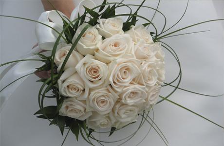 Белые розы в морозный день