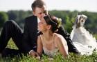 Главная достопримечательность на свадьбе - это вы сами