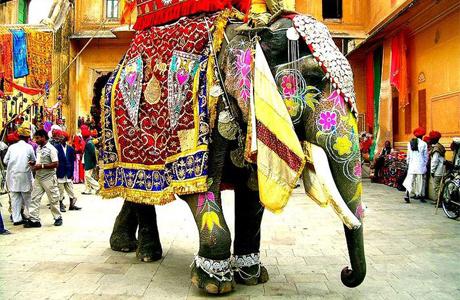 В Индии правители совершают свадебный обряд верхом на слонах