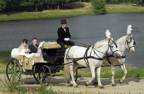 Свадебный кортеж из сказки
