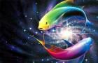 Совместимость по знаку Зодиака – если ты Рыбы