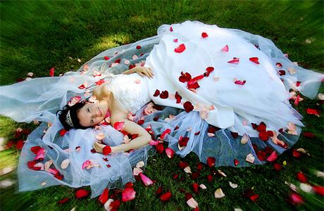 Лепестки роз  для свадебной фотосессии