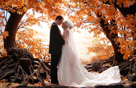 Свадьба в октябре выбери самое