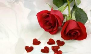 Розы в свадебном оформлении: доступность