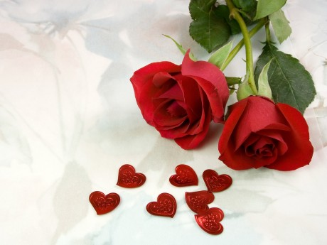 Розы для украшения свадьбы