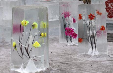 Живые цветы в ледяных скульптурах