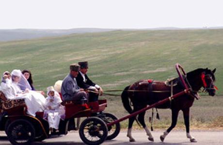 Похищение невесты в Грузии