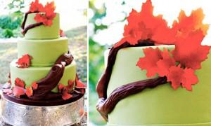 Торт с шоколадной ветвью