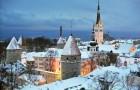 Зимний медовый месяц в Талинне