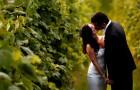 Первая годовщина: возвращение в день свадьбы