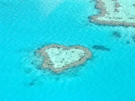 Большой Барьерный Риф для медового месяца
