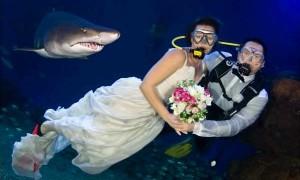 Свадьба в аквариуме