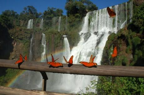 Водопады Игуасу на границе Аргентины и Бразилии