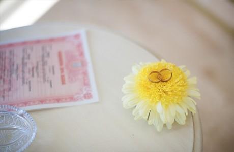 Живой цветок для колец