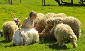 Китайский свадебный гороскоп 2012: Коза (Овца)