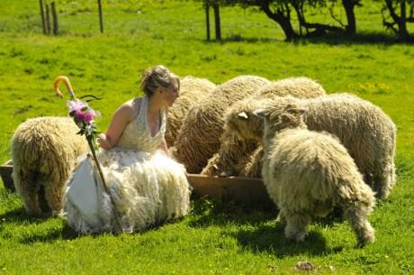 Китайский свадебный гороскоп 2012 для Козы (Овцы)