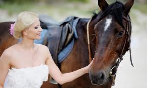 Китайский свадебный гороскоп 2012: Лошадь