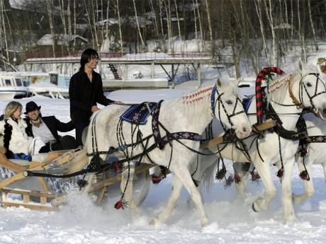 Зимний свадебный кортеж - сани
