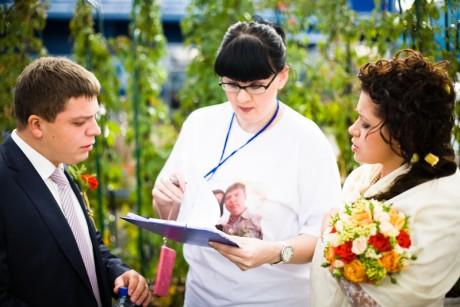 Услуги свадебного распорядителя - бюджет