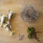 Тебе понадобятся маленькие кубки, мини-суккуленты, мох, аэрозольная белая краска, горячий клей и красивый жених