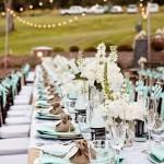 Моноцвет в оформлении свадебного стола