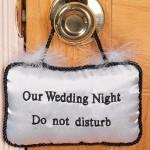 Первая брачная ночь начинается