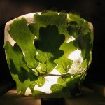 Зеленый - цвет жизни и радости