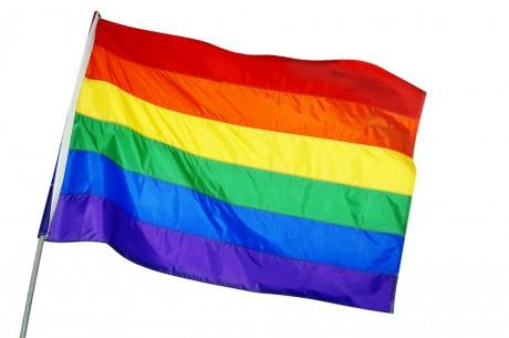 Однополые браки в Вашингтоне