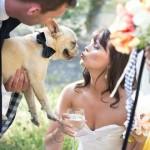 Поцелуй с невестой