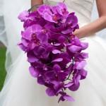 Сиреневые орхидеи смотрятся просто великолепно