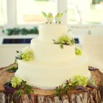 Пень дерева - необычный поднос для свадебного торта