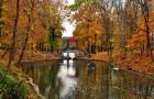 Идея дня: сделай предложение в романтическом уголке Украины