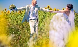 Свадьба и подсолнухи