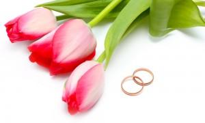 Тюльпаны для твоей свадьбы