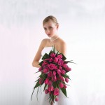 Романтика розовых цветов