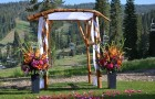 Log Wedding Arch (2)
