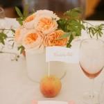 Персик исполняет роль рассадочной подставки для рассадочной карточки