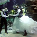 Любишь водные глубины? А пожениться в воде слабо?