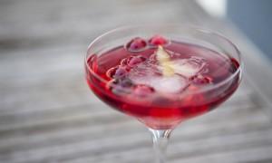 best-wedding-reception-cocktails-signature-drinks-cranberry-sparkler__full-carousel