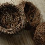 Не знаешь, какой элемент свадебного декора выбрать для своего праздника? Останови свой выбор на птичьем гнезде!