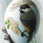 Птицы - символы весны