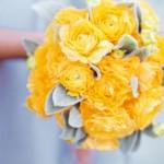 Солнечно-желтое очарование