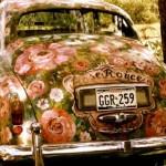 Розы мягких тонов на твоем свадебном авто