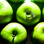 Обручальные кольца на фоне спелых яблок