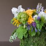 Мох и лесные цветы