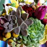 Розы, тюльпаны и суккуленты