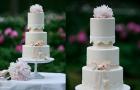 romantic-elegant-wedding-cake-bow-lace-applique__full