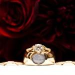 Свадебные кольца на фоне красных роз